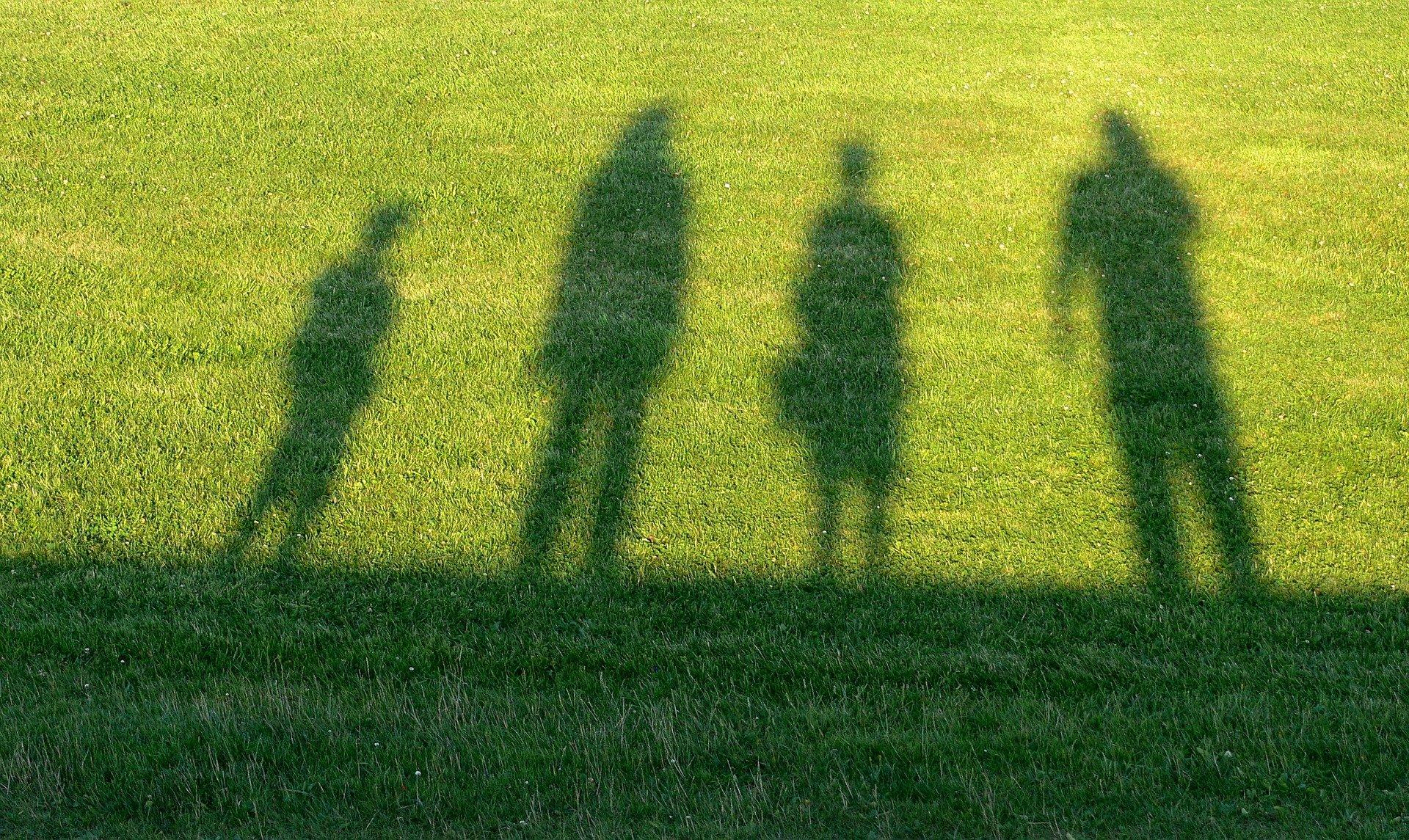 Guarda y custodia de menores
